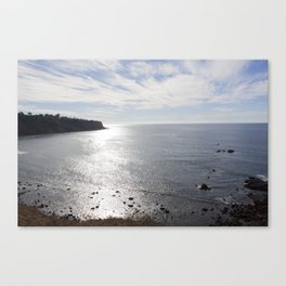 Rat Beach Canvas Print