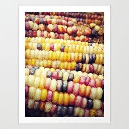 Colorful Corn II Art Print
