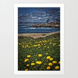 Daisies Vertical, Sunset Cliffs, San Diego Art Print