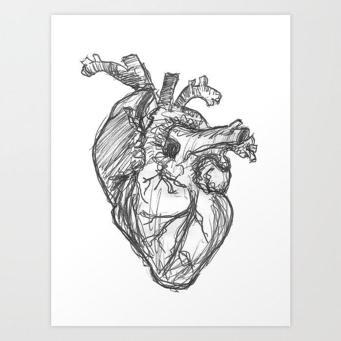 Anatomical Heart Ink Sketch Art Print By Midmod Society6
