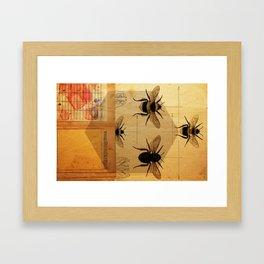 Apidae Framed Art Print
