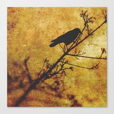 Solitary Bird Canvas Print