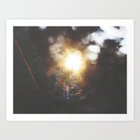 Through the Pines Art Print