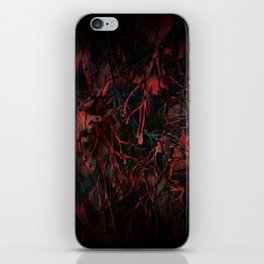 Enter at your own Risk iPhone Skin