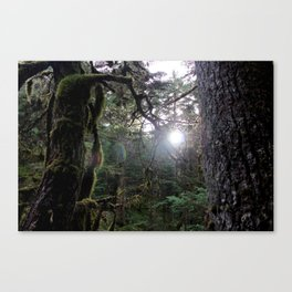 In the Forest Fantasy Canvas Print