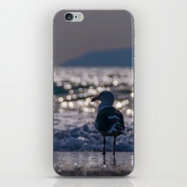 Afternoon Seagull iPhone Skin