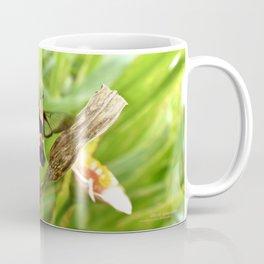 Bumble shrimp Coffee Mug