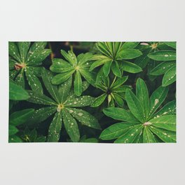 Plants and Leaves Rug