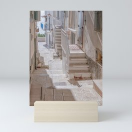 small streets in South Italy Mini Art Print