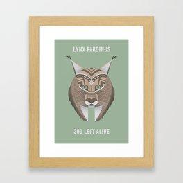 Iberian Lynx Framed Art Print