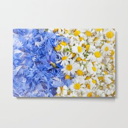 Blue cornflower and white chamomile Metal Print