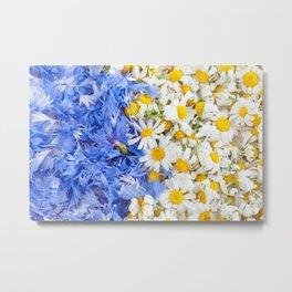 Blue cornflower and white chamomile Metal Print