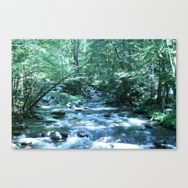 A Fork in the River (color) Canvas Print