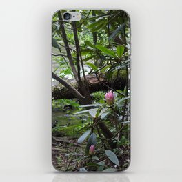 Rhododendron on Abrams Creek iPhone Skin