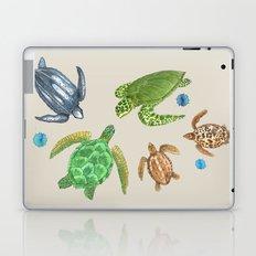 Sea Turtle Types Laptop & iPad Skin