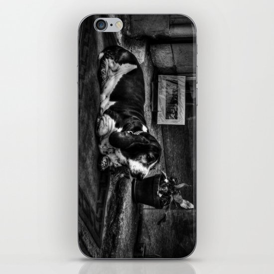 Guard Dog iPhone & iPod Skin