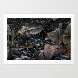 The Fall Blues Art Print