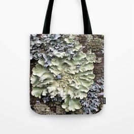 Nature's Fence Flowers Tote Bag