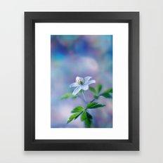 Blue Anemone Framed Art Print