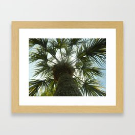 Palm Tree in The Sky Framed Art Print