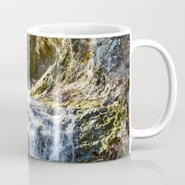 Alone in Secret Hollow with the Caves, cascades, and Critters, No.4 of 21 Coffee Mug