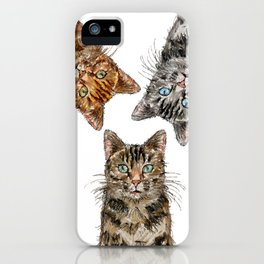 Triple Tabbies Cats iPhone Case