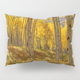 Autumn Aspen Forest Aspen Colorado Pillow Sham