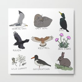 British Headland Wildlife Metal Print