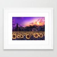 sunflowers Framed Art Prints featuring sunflowers by Bekim ART