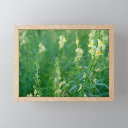 Natures Moments, Tiny Dancers Framed Mini Art Print
