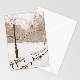 Snowing in Central Park Stationery Cards