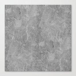 Simply Concrete II Canvas Print