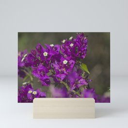 Purple Flowers Mini Art Print