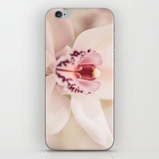 Vivacious iPhone & iPod Skin