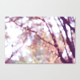 Glitter in the air Canvas Print