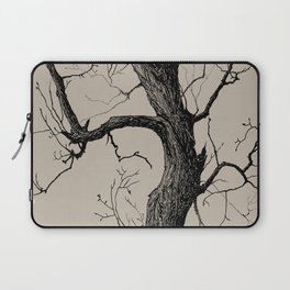 Old tree Laptop Sleeve