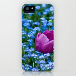 Pink Tulip in the blue iPhone Case