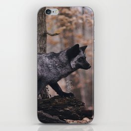 Silver Fox iPhone Skin