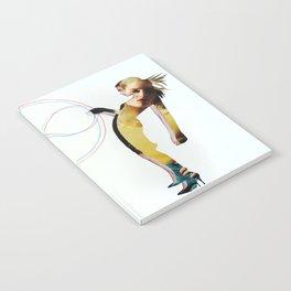 Gemini Notebook