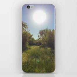 Sunshine on the path iPhone Skin