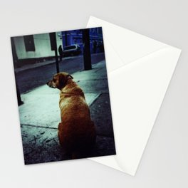 Doggie waits Stationery Cards