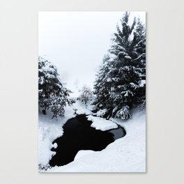 Snowy pond and trees disappearing in fog Canvas Print
