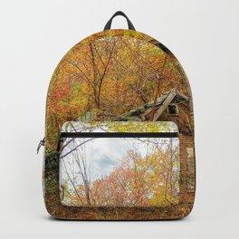 Seasons Pass Backpack