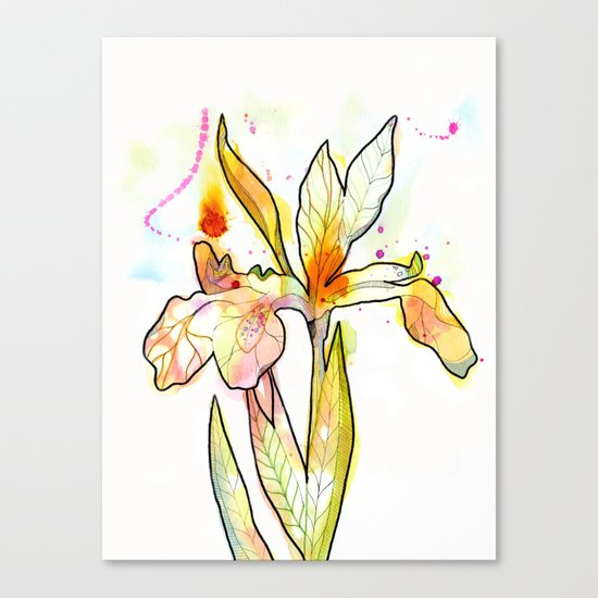 Queen Flower Canvas Print
