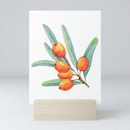 sea buckthorn Mini Art Print
