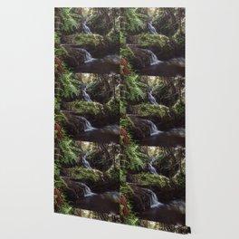 Jungle Waterfall Wallpaper