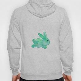 Little Bunny No. 1i by kathy Morton Stanion Hoody