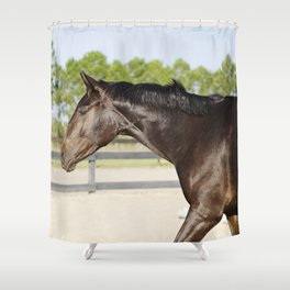 Shimmering Bubba Shower Curtain
