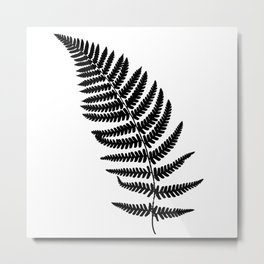 Fern frond black silhouette. Forest concept. Metal Print