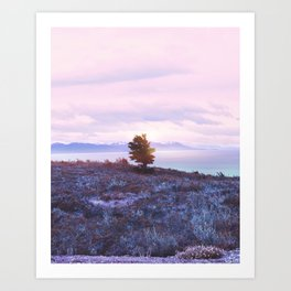 Pastel vibes 76 Art Print